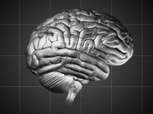cerebroalzheimer